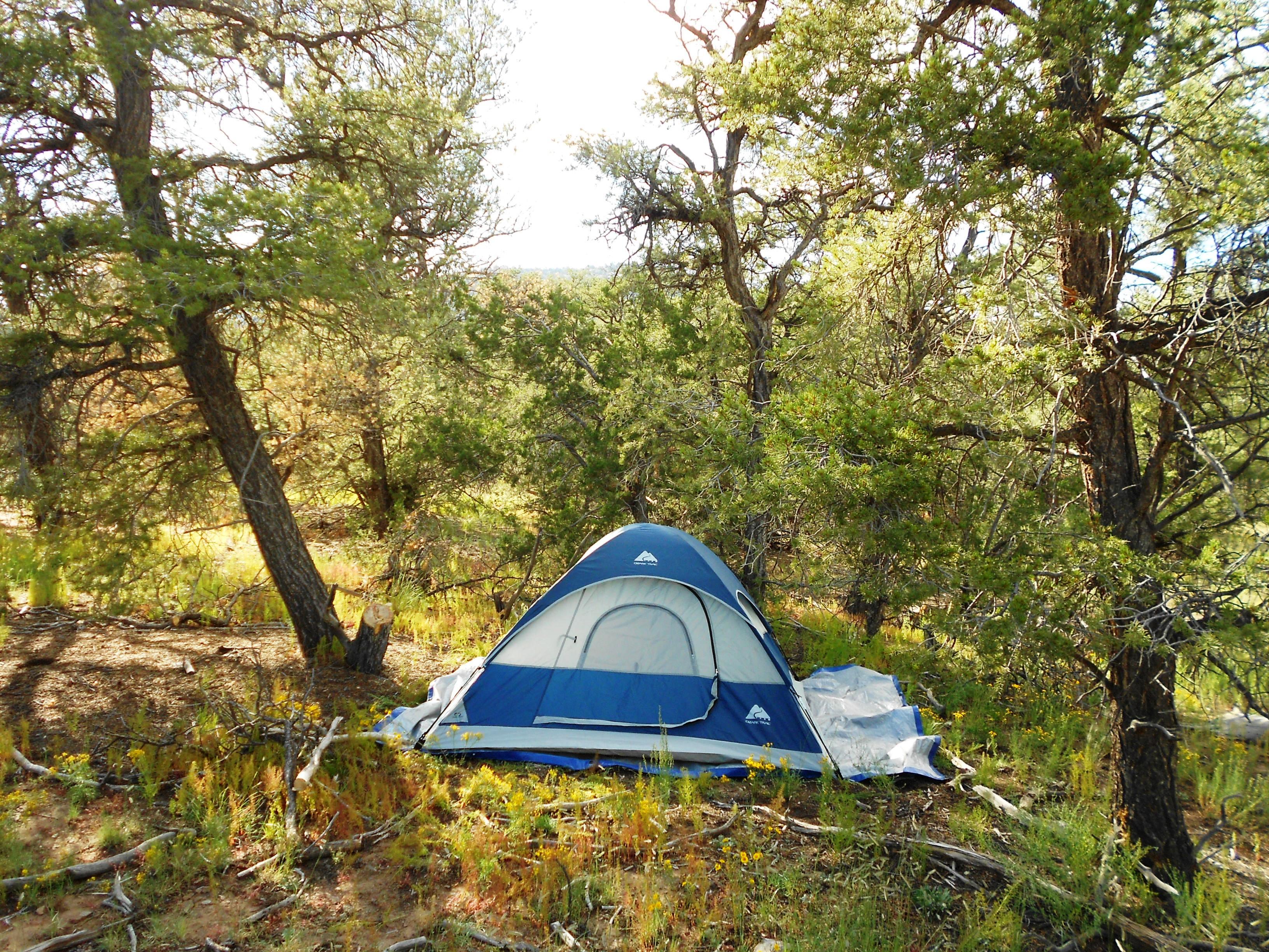 Mt Taylor Camping