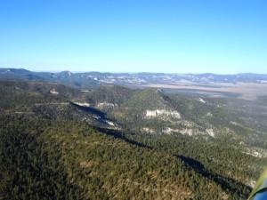 New Mexico Springerville