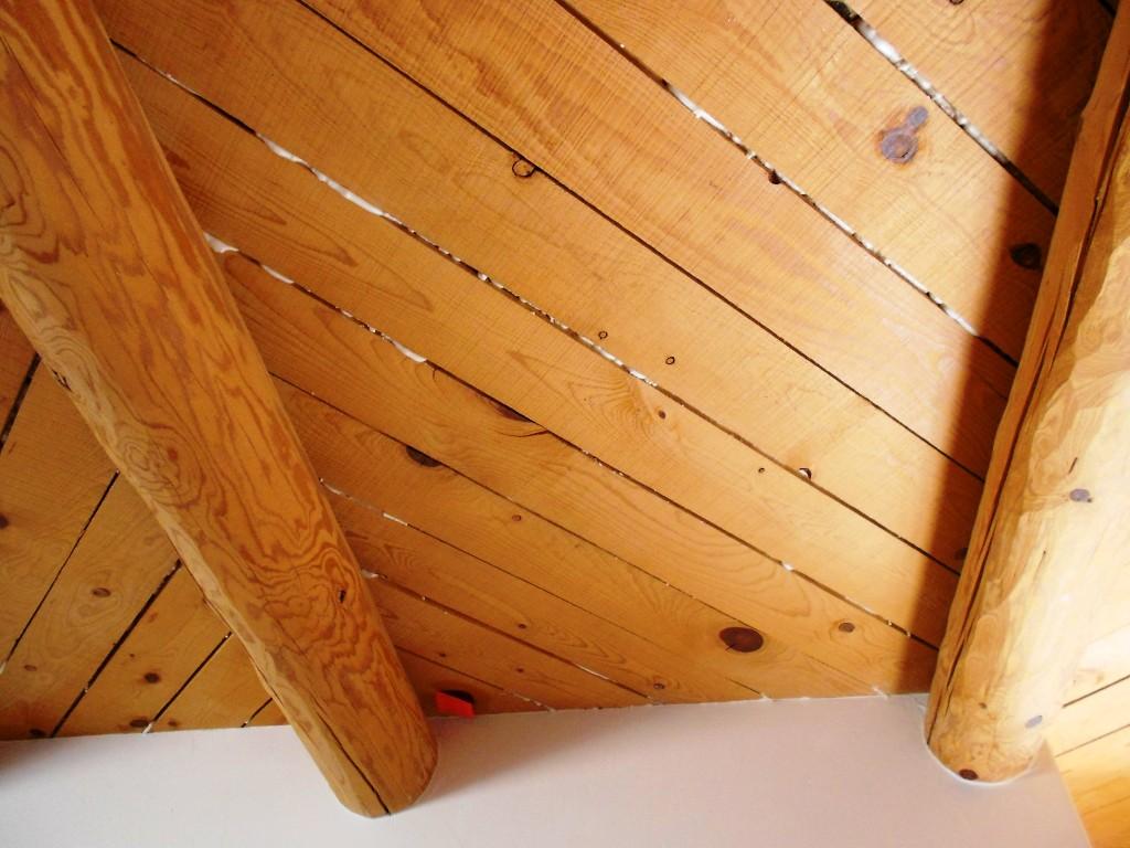 energy savings insulation green money heat foam ceiling