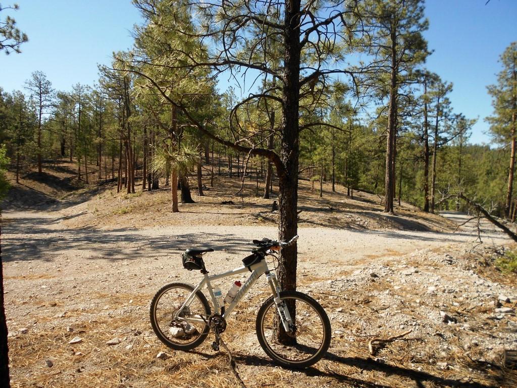 San Mateo Mountain Bike Ride