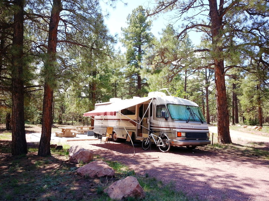 Pace Arrow RV Motorhome Camping Campground Quaking Aspen Gallup New Mexico Pine Tree