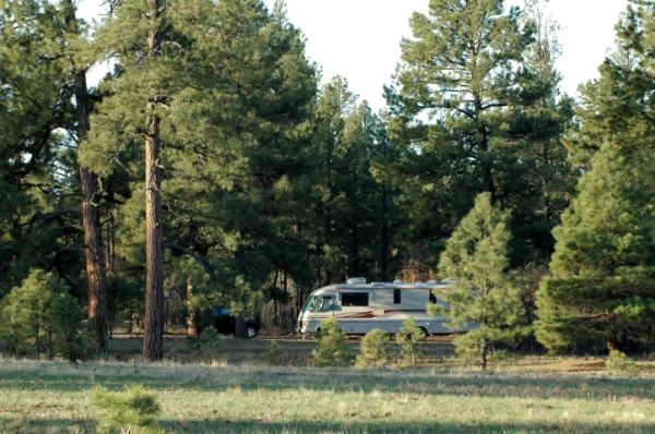 RV Motorhome Boondocking National Forest