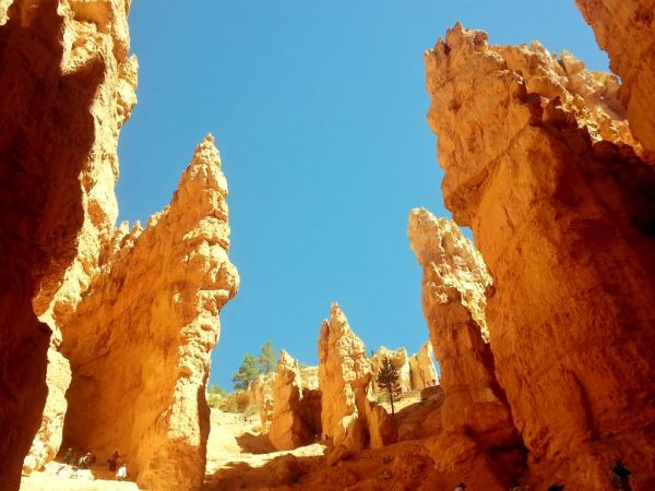 Bryce Canyon National Park Hike Hoodoo