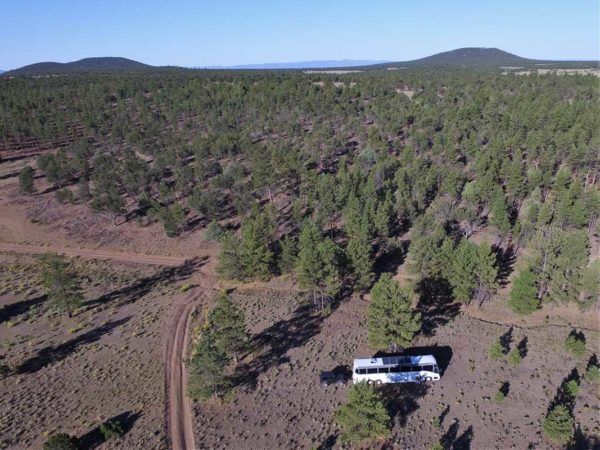 Missy bus boys Mt. Taylor New Mexico Grants boondocking forest